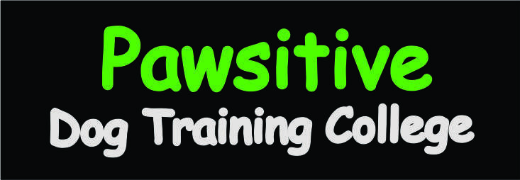 Pawsitive Dog Training College